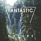 Fantastic Nature – Beautiful Natural Sounds, Soothing Sounds of Nature, Relaxing Ambient Music de Nature Sound Collection