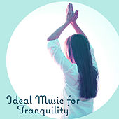 Ideal Music for Tranquility - Focus on Exercises, Stretching through Yoga, Behavior Harmoni and Balance, Body and Mind by Buddha Lounge