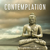 Contemplation – Nature Music for Relax, Deep Meditation, Yoga, Calming Contemplation, Relaxing Music de Zen Meditation and Natural White Noise and New Age Deep Massage