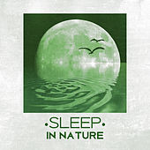 Sleep in Nature - Peaceful Sounds of Nature for Sleep, Easily Fall Asleep, Relax, Restful Sleep de Sounds Of Nature