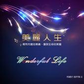 Wonderful Life by Jenny Lin