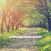 Surround Sound Nature by Various Artists