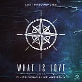 What Is Love 2016 (Dimitri Vegas & Like Mike Remix) von Lost Frequencies