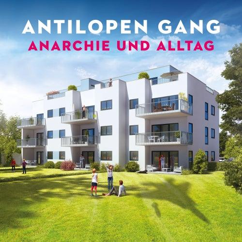 Anarchie und Alltag von Antilopen Gang