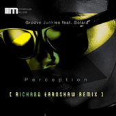 Perception by Groove Junkies