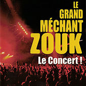 Le Grand Méchant Zouk: Le concert de Various Artists