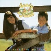 Aniversario Do Tatu de Sandy & Junior