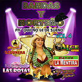Bandas y Norteno, Vol. 4 by Various Artists