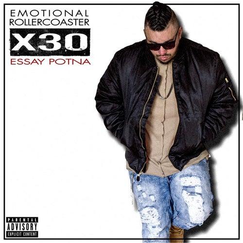 essay potna emotional rollercoaster x10