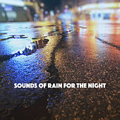 Sounds of Rain for the Night by Various Artists