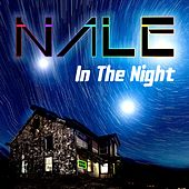 In the Night by Nale