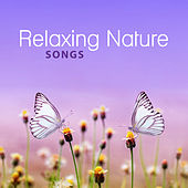 Relaxing Nature Songs – Soothing New Age Music for Relaxation, Relaxing Music, Relieve Stress, Calm Down de Nature Sounds Artists