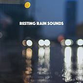 Resting Rain Sounds by Various Artists
