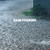 Rain Pouring by Various Artists