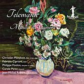 G.P. Telemann: Musica da Camera by Various Artists