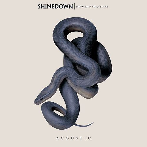 How Did You Love by Shinedown