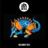 Volumen Tres von Various Artists