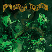 Feathers von Dead Meadow