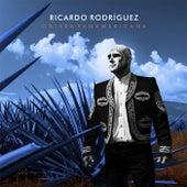 Odisea Panamericana by Ricardo Rodríguez