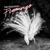 Flamingo de The Peacocks
