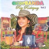 Acorbanda (Vol. 2) by Roy Rodriguez