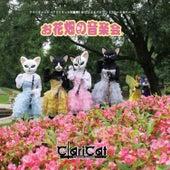 Concert in the Flower Garden by Claricat Kotofue Papillon