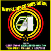 Studio 54 - Where Disco Was Born by Various Artists