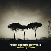 In Praise of Shadows by Peter Erskine New Trio