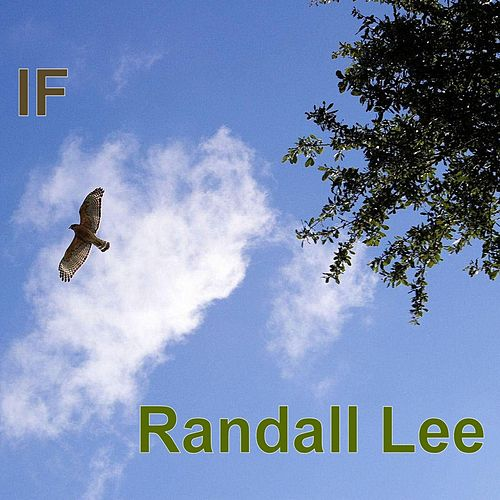 If by Randall Lee