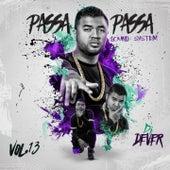 Passa Passa Sound System, Vol. 13 by Various Artists