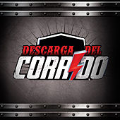 Descárga del Corrido by Various Artists