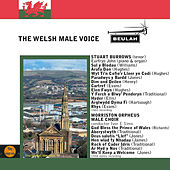 The Welsh Male Voice by Various Artists