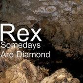 Somedays Are Diamond by Rex