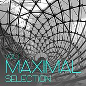 Maximal Selection, Vol. 1 - Minimal Tunes von Various Artists