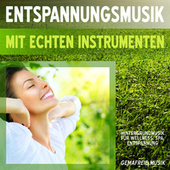 Entspannungsmusik mit echten Instrumenten - Hintergrundmusik für Wellness, Spa, Entspannung - gemafreie Musik von Various Artists