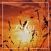 Enjoy The Silence, Vol. 1 by Various Artists