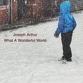 What A Wonderful World by Joseph Arthur