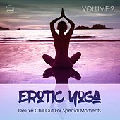 Erotic Yoga, Vol. 2 by Various Artists