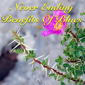 Never Ending Benefits Of Blues von Various Artists