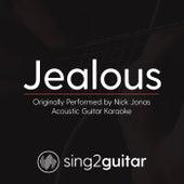 Jealous (Originally Performed By Nick Jonas) [Acoustic Guitar Karaoke] de Sing2Guitar