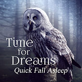 Time for Dreams: Quick Fall Asleep, Sleep Music, Calming Sounds for Evening, Relaxing Zen Song by Deep Sleep Music Academy