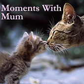 Moments With Mum de Various Artists