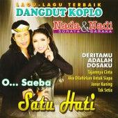 Dangdut Koplo Nada Nadi (Lagu-Lagu Terbaik) by Various Artists