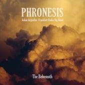 Stillness by Phronesis