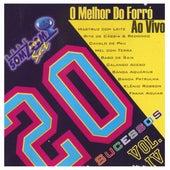 Vinte Sucessos Vol. IV O Melhor Do Forró Ao Vivo von Various Artists
