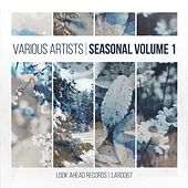 Seasonal, Vol. 1 by Various Artists