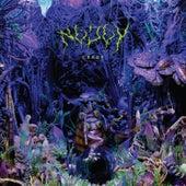 Creep - EP by No Joy