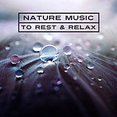 Nature Music to Rest & Relax – New Age Music, Sounds of Nature, Calm Waves, Healing Therapy de Sounds Of Nature