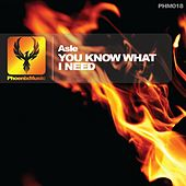 You Know What I Need by Asle