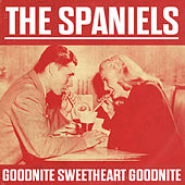 Goodnite Sweetheart Goodnite by The Spaniels
